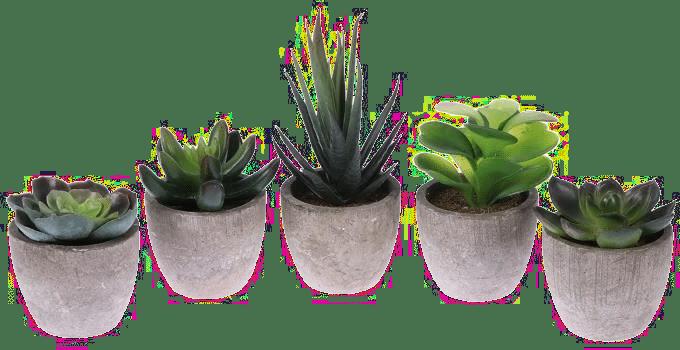 cadeau pour une personne âgée - plante artificielle