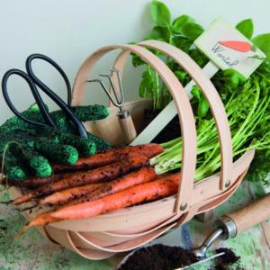 cadeau pour un passioné du jardinage