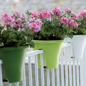 cadeau jardin balcon grand-père