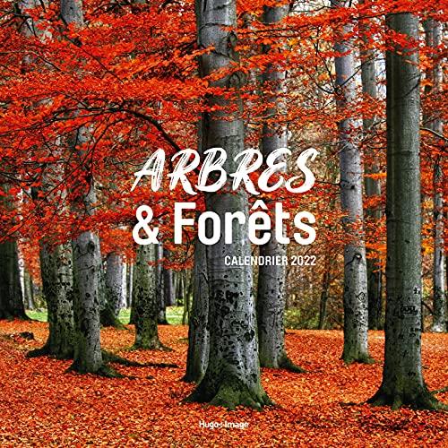 Calendrier Mural Arbres et Forêts - calendrier pour Grand-père