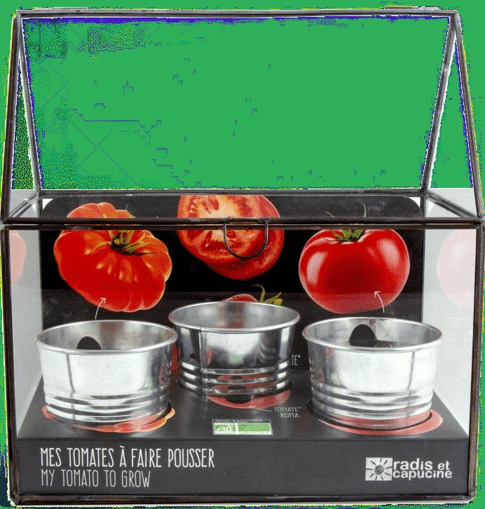 Cadeau pour un homme de 70 ans - serre pour tomates