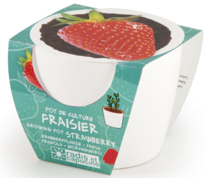 fraisier - cadeau grand-pere 70 ans